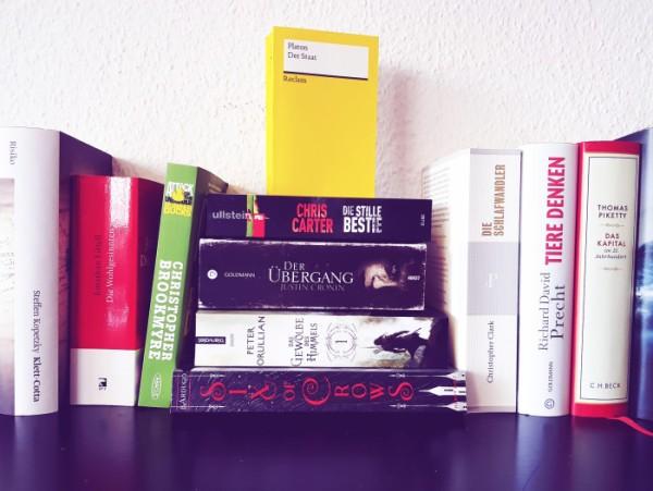 Eine Reihe und ein Stapel Bücher, u.a. Romane, Thriller, Sachbücher